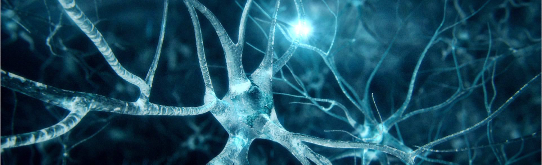 New Study Finds Cord Blood-derived Stem Cell Treatments Improve Ataxia Patients' Functionality and Quality of Life