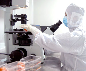 Stem Cell quality assurance