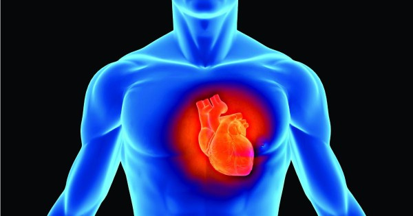 Stem Cell Treatment for Heart Conditions